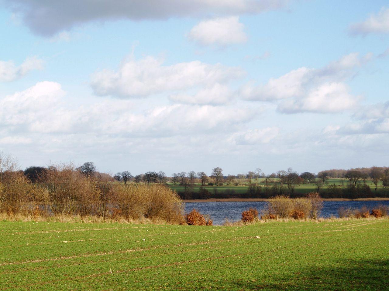 Blick über den Acker zum See