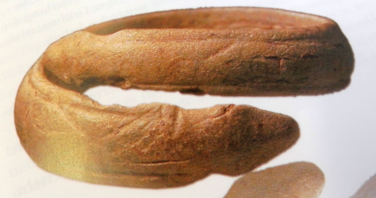 Bronzener Schlangenring