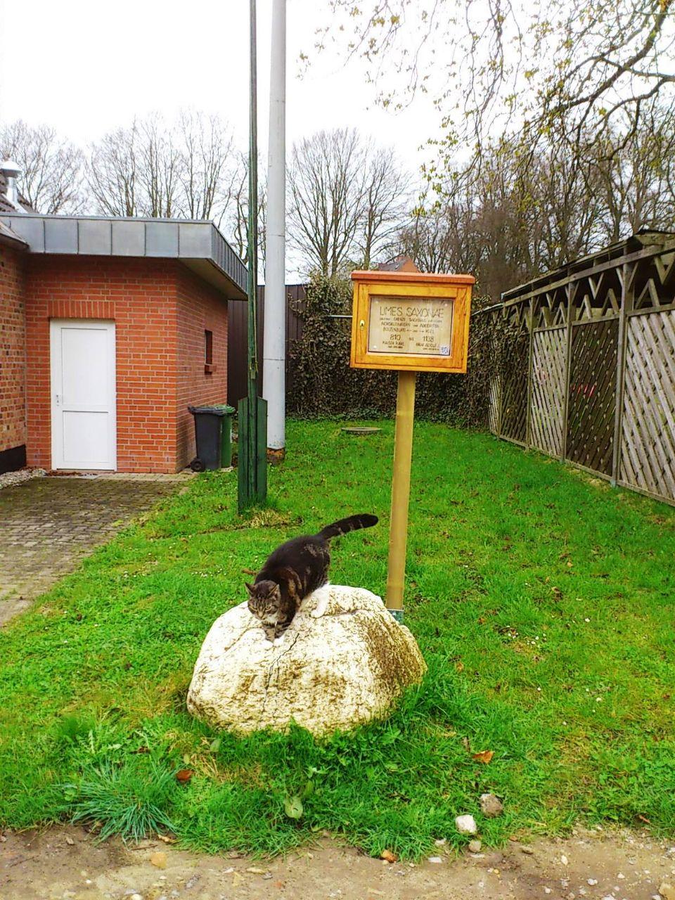 Schild mit Katze Depenau