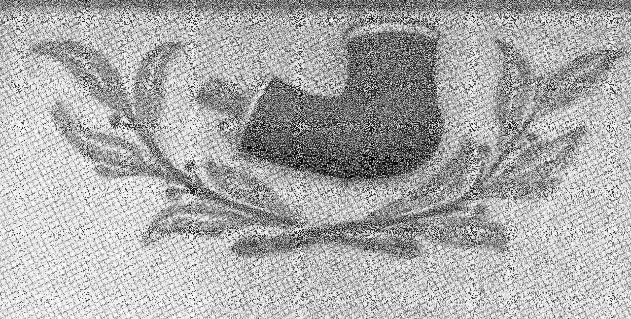 Logo Pfeifenkopf