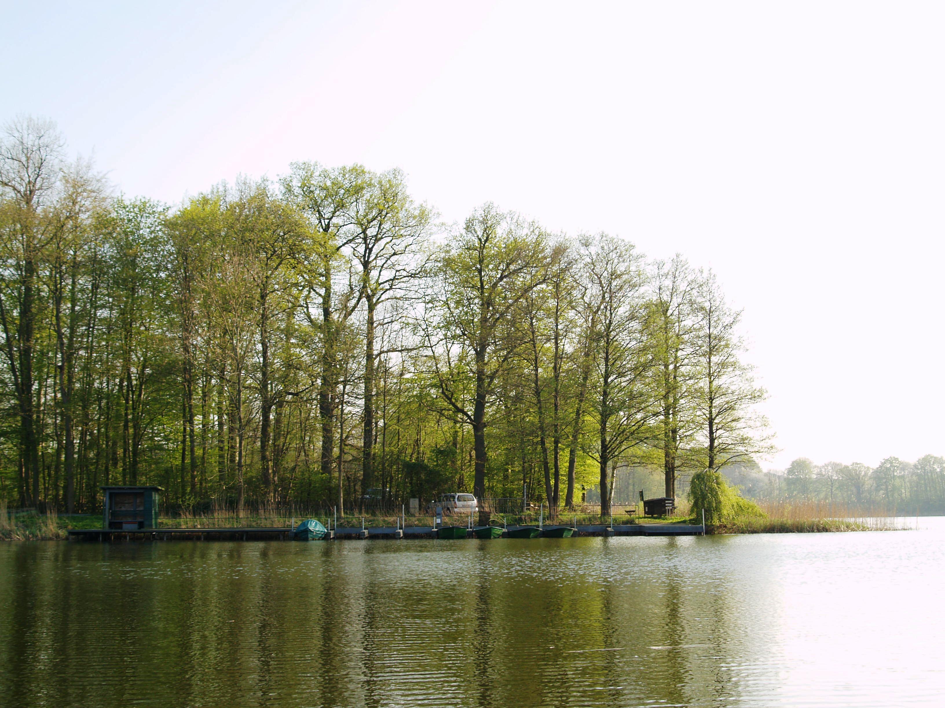 Die Halbinsel im Holzsee