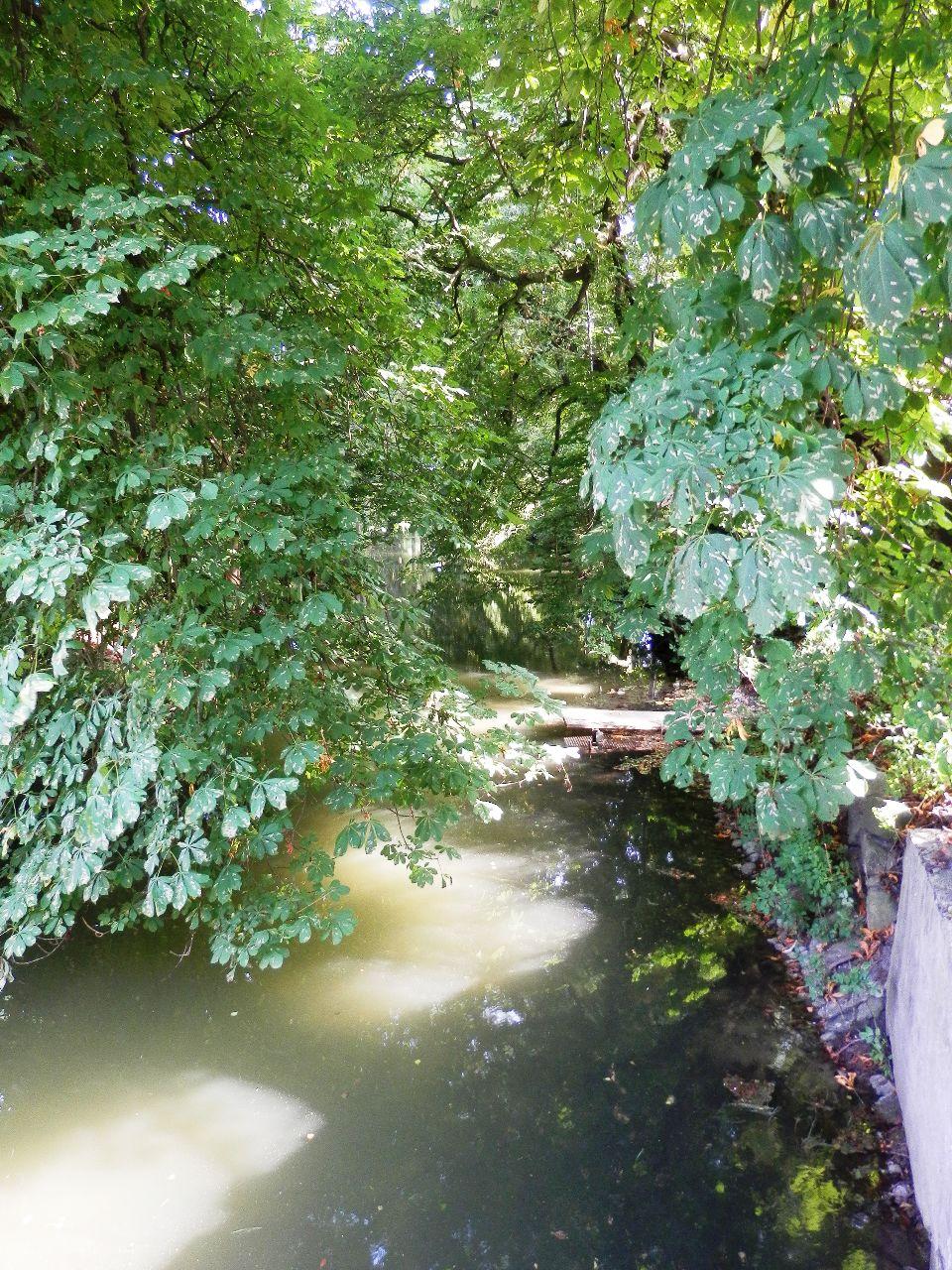 Alte Schwentine bei der Perdoeler Mühle