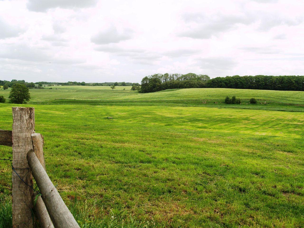 Blick zum früheren Mühlenteich