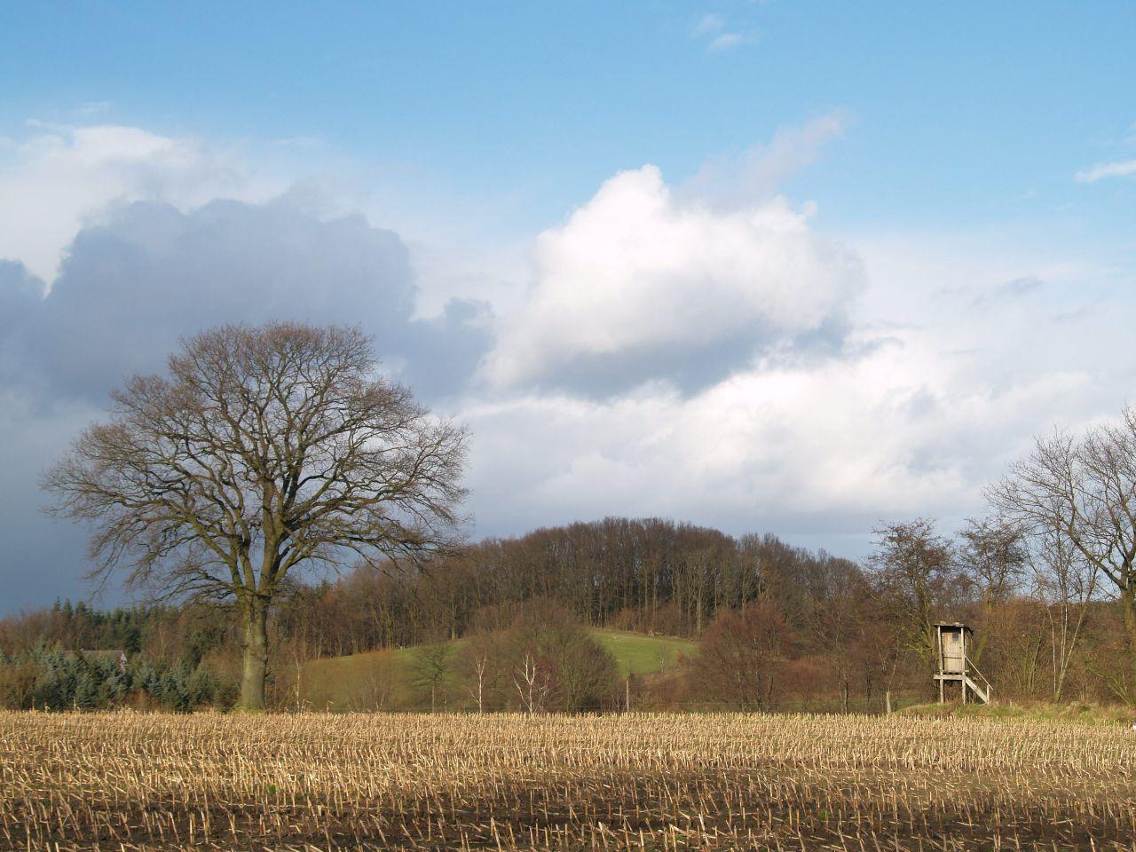 Blick zum Totenberg