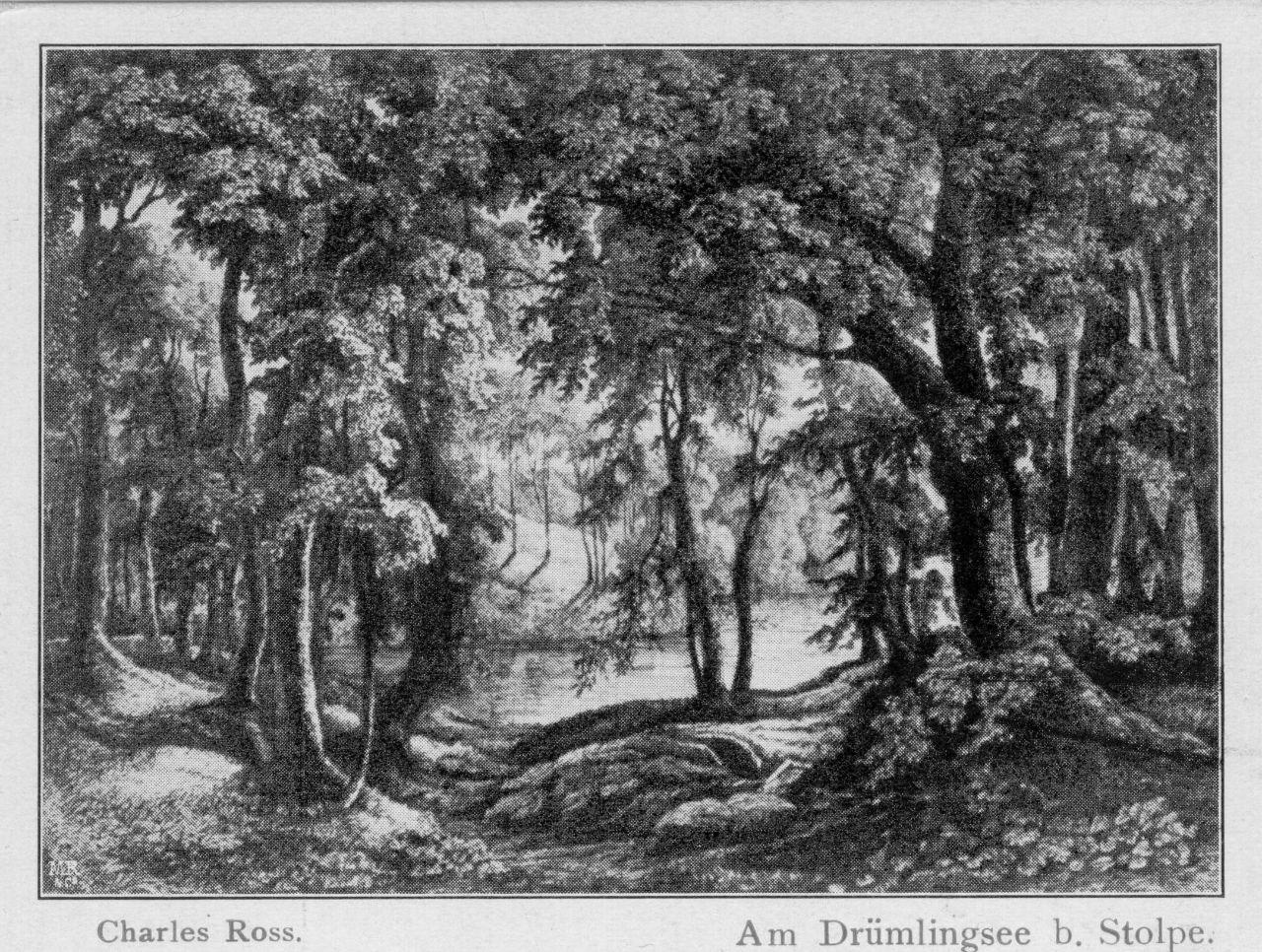 C. Ross Drömling