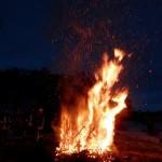 Das Feuer der Tannenbäume