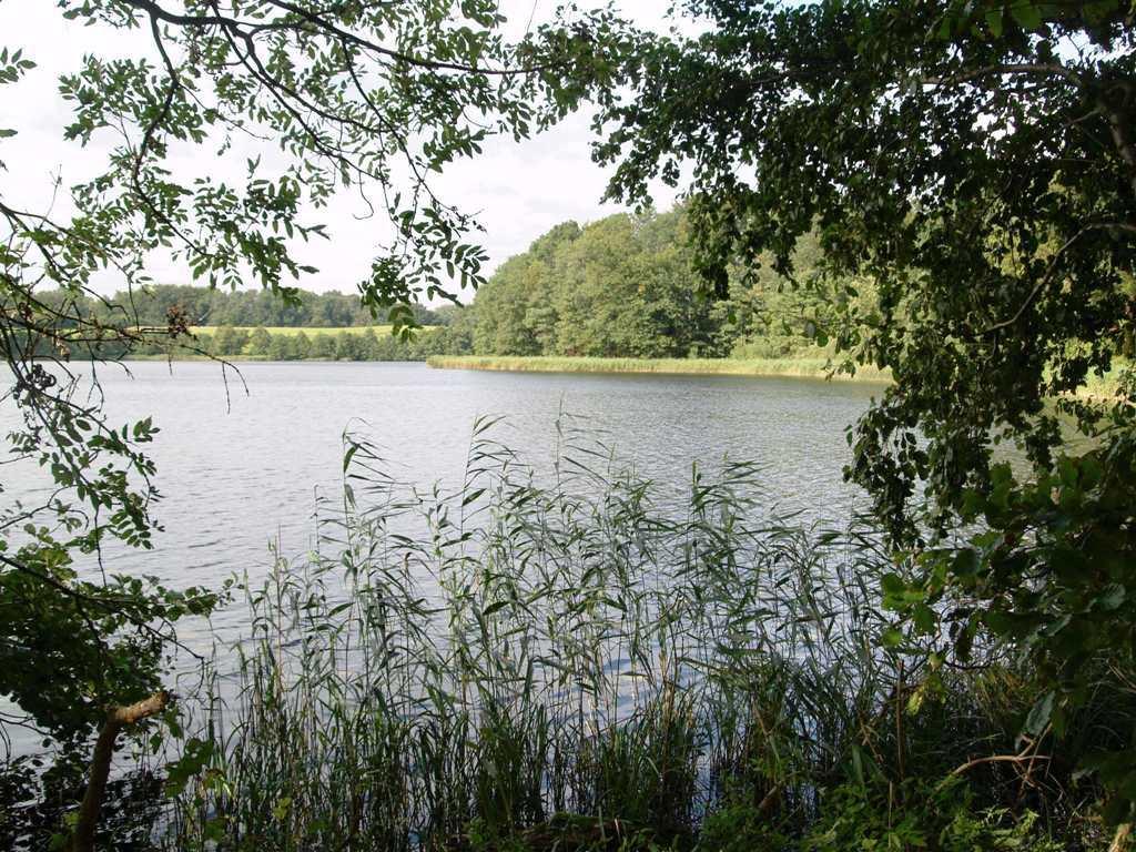 Durchblick zum Holzsee