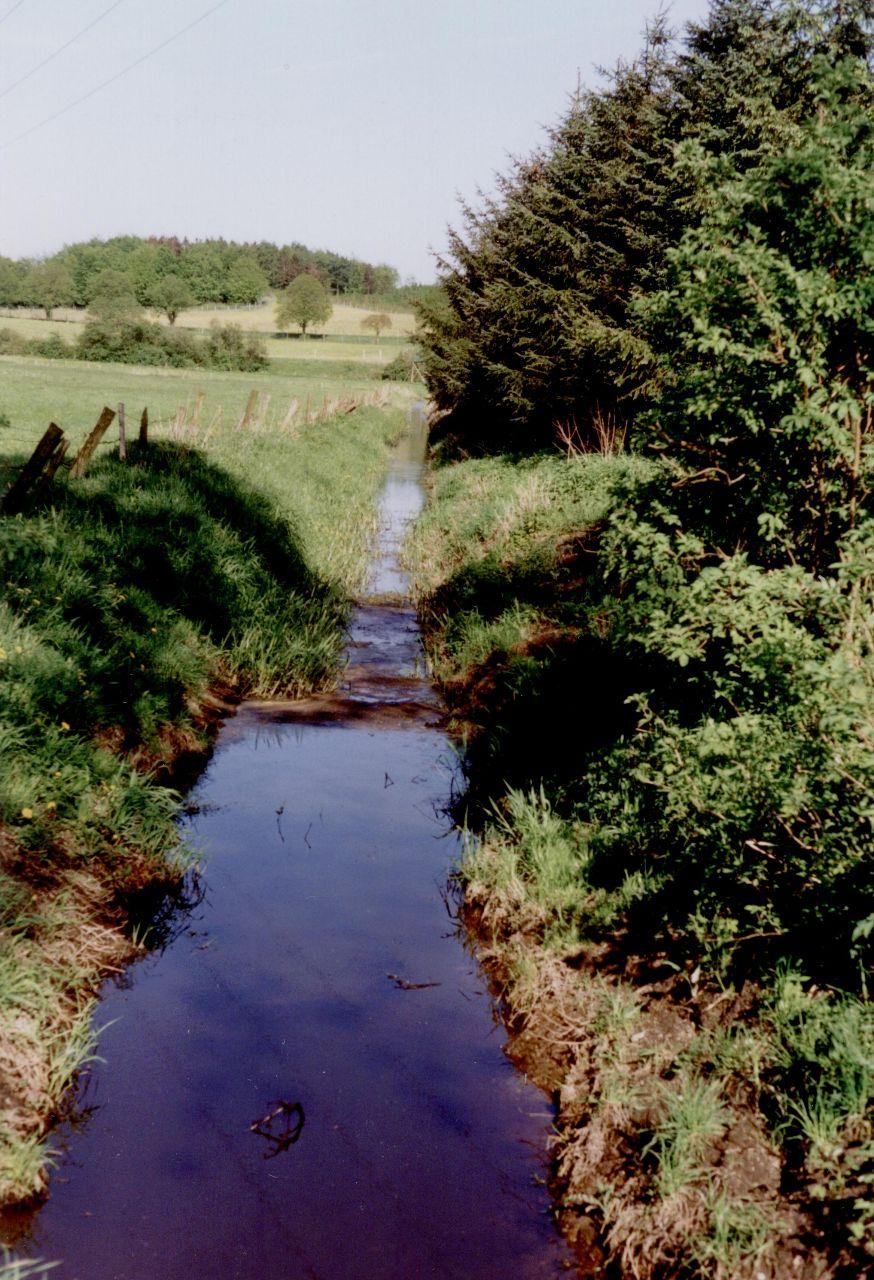 Entwässerungsgraben im Moor