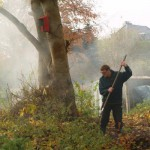 Gemeindevertreter Thomas Wendt bei der Arbeit an der Kastanie des Schulwaldes an der Badestelle