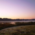 Nebel über dem See und Raureif auf dem Gras