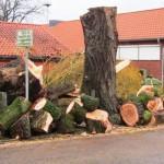 Nur noch ein großer Holzhaufen