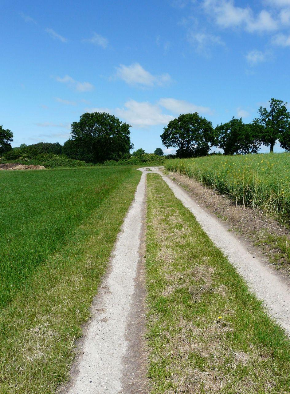 Spurplattenweg