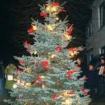 Stolper Weihnachtsbaum 2011