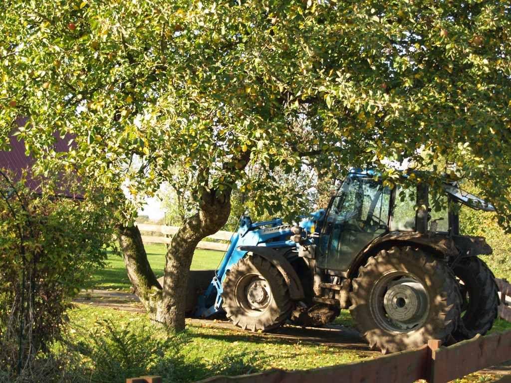 Traktor auf dem Hof Silgenwisch