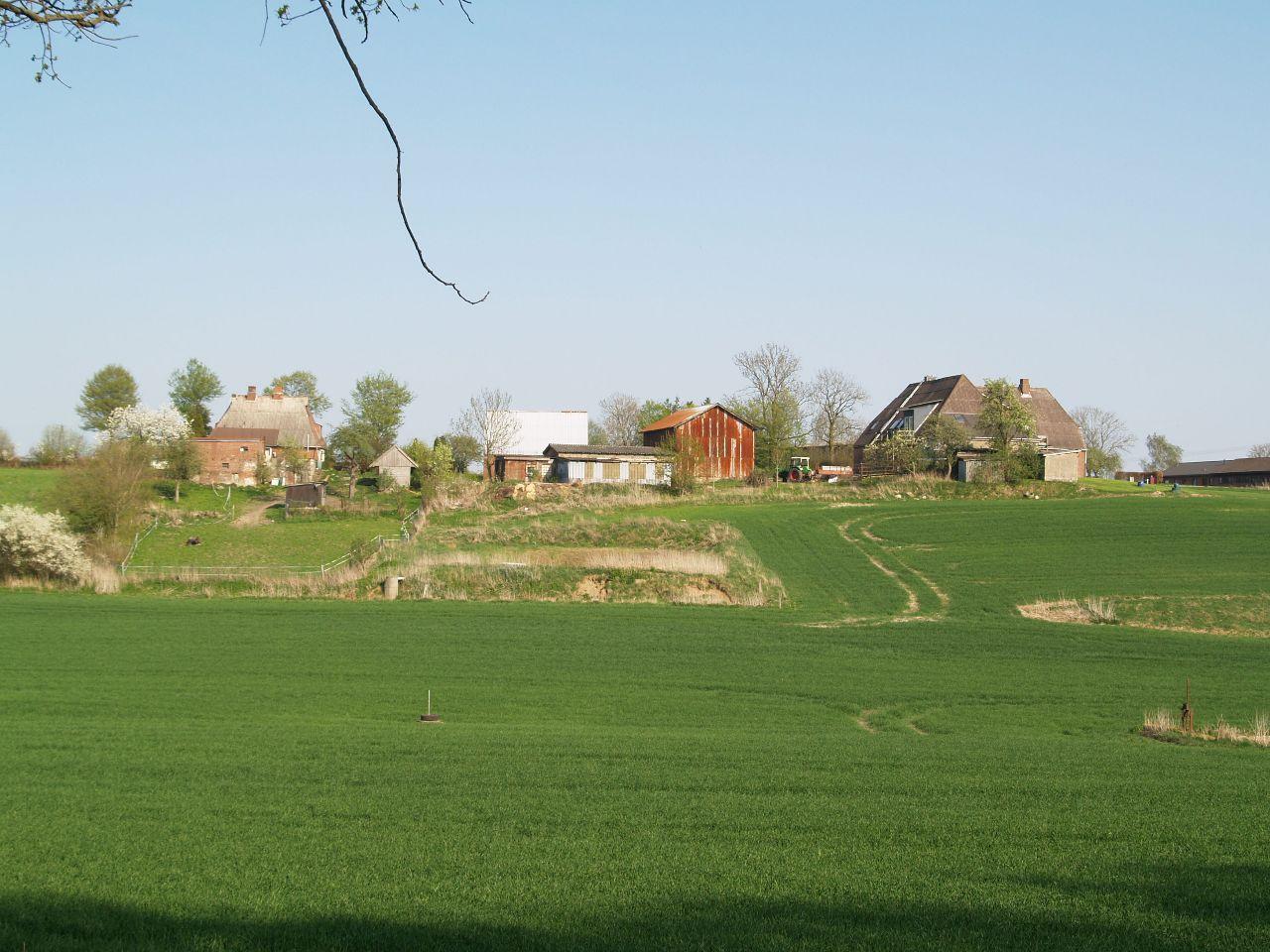 Blick vom Krummendiek auf die Höfe des Kielerkamps