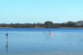 Badestelle Stolper See im Frühjahr