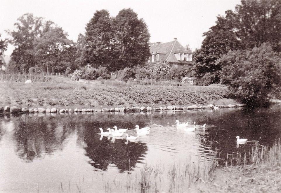 Neues Herrenhaus mit Teich 1959