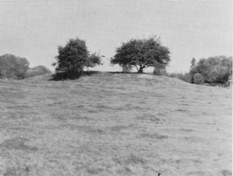 Turmhügel im Hochmoor bei Depenau