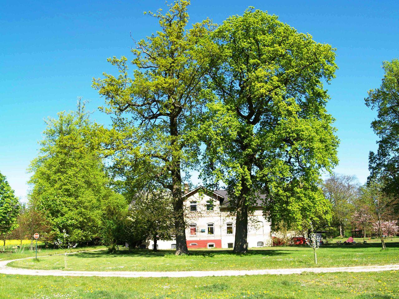 Herrenhaus Gut Horst zwei Eichen