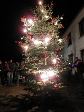 Stolper Weihnachtsbaum