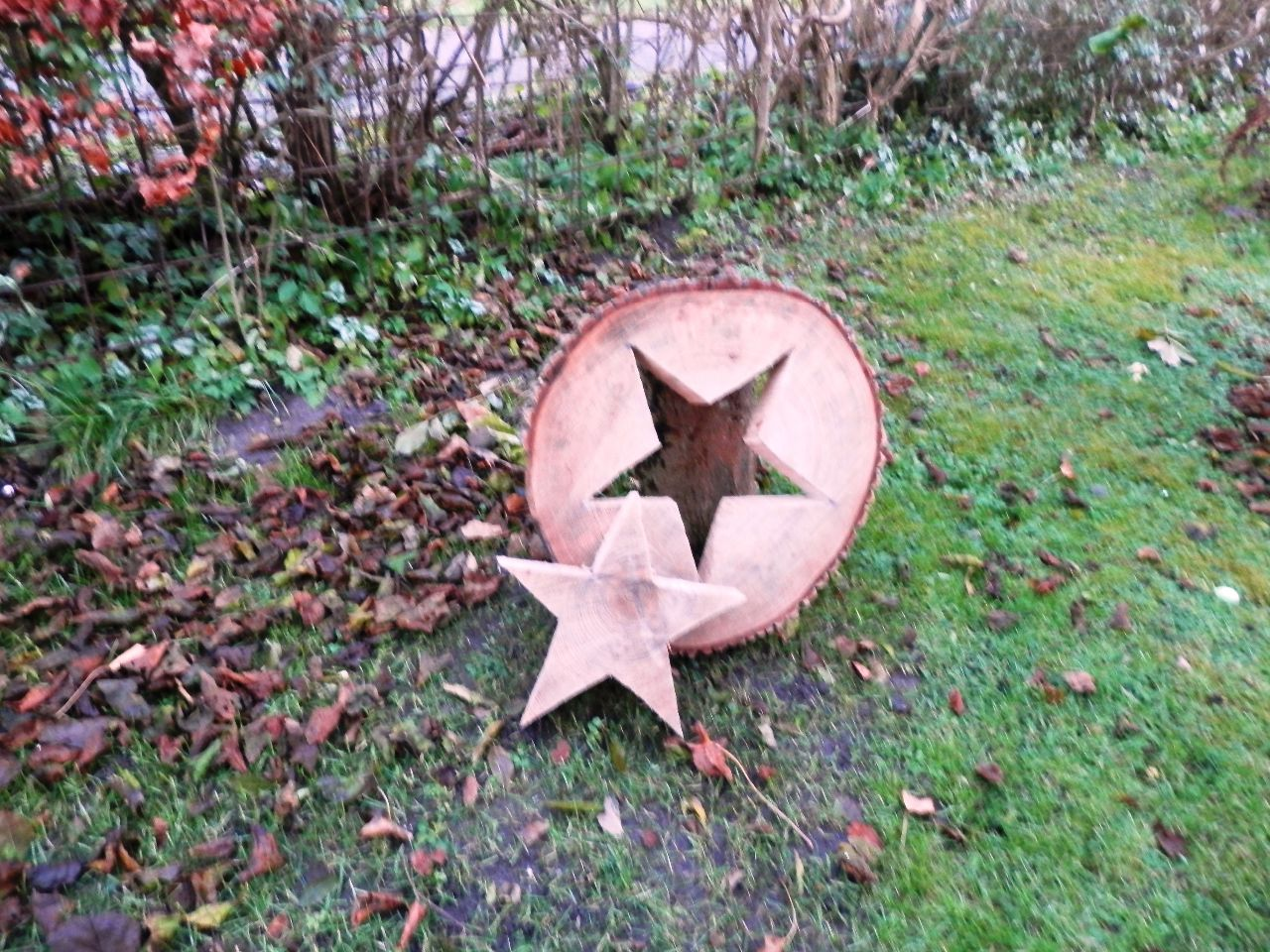 Der Baumstamm-Stern