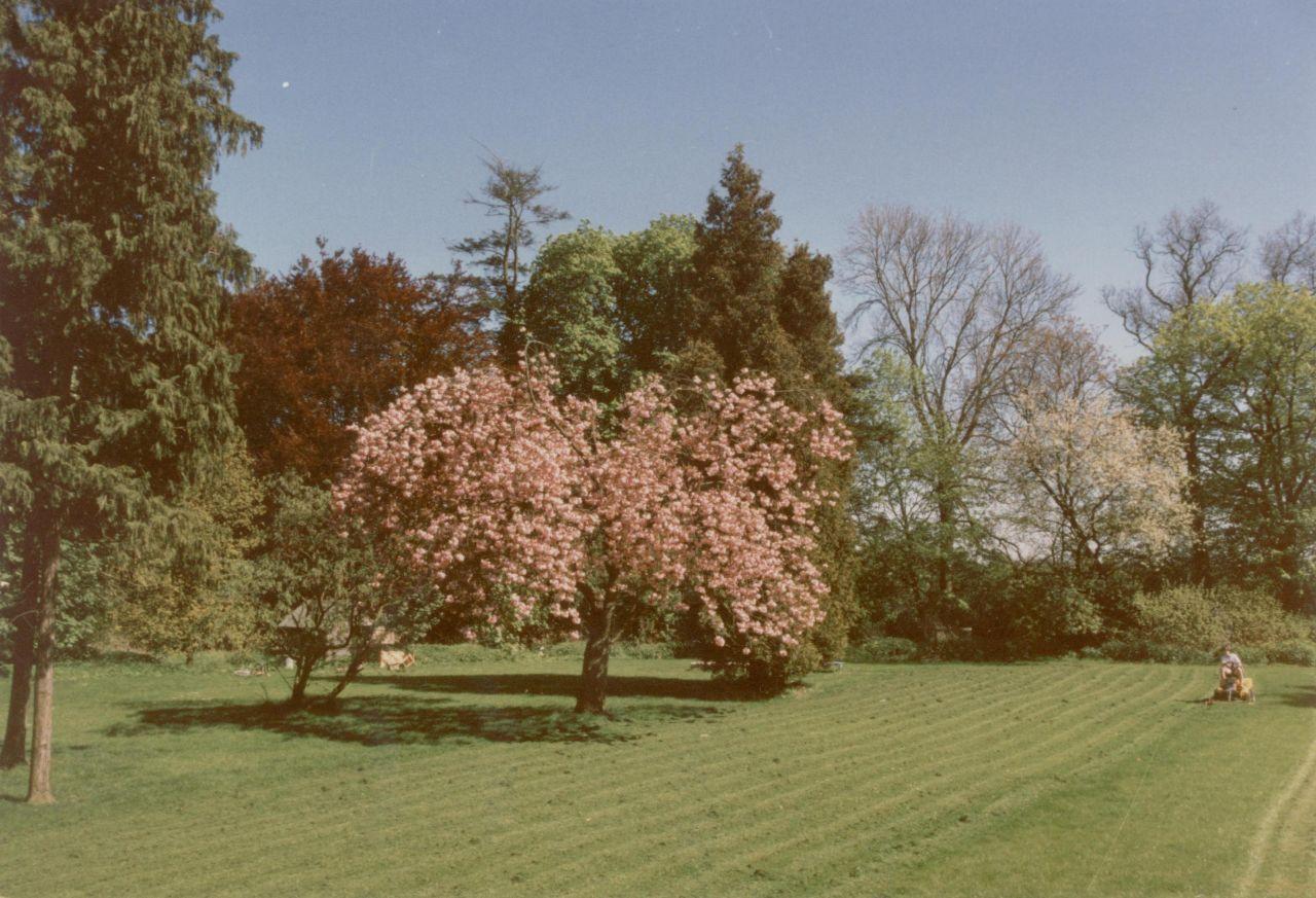 Park von Gut Horst