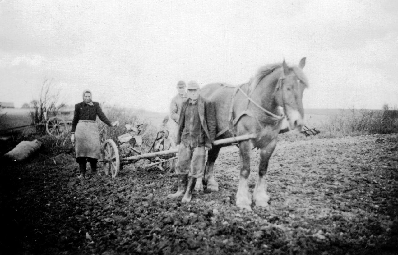 Zweiter Belgier mit Kartoffellochmaschine