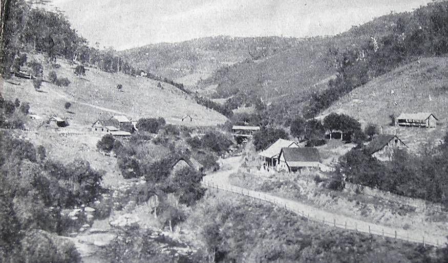 landschaft-um-blumenau 1930