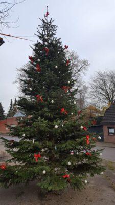 Der 5m Baum