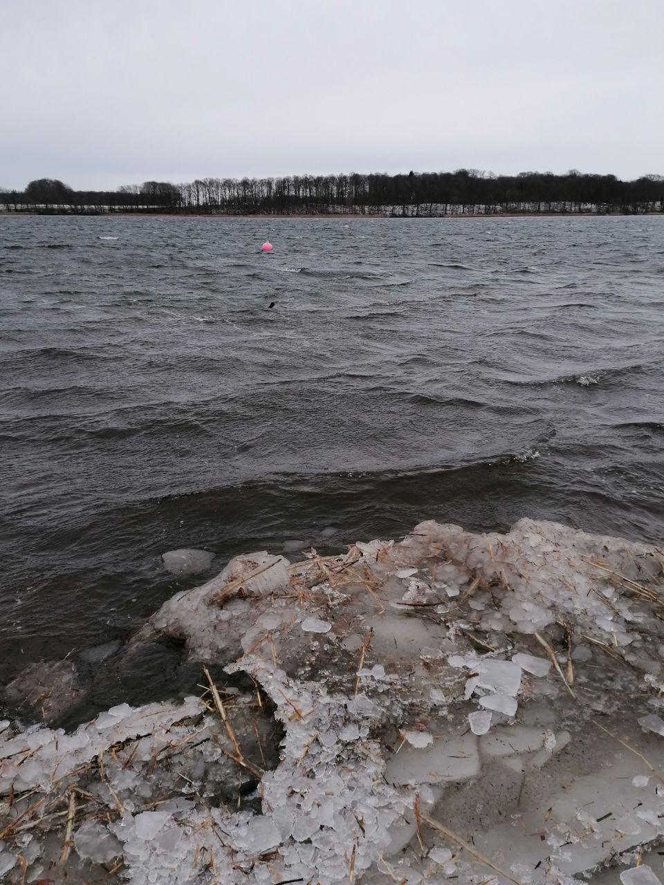 Der See ist wieder frei