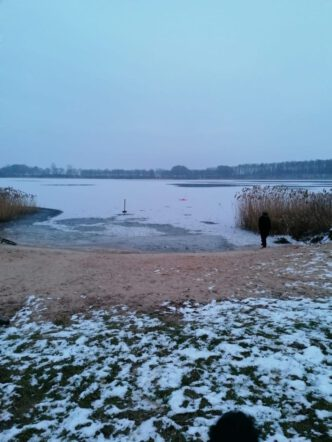 Eiswinter Februar (1)